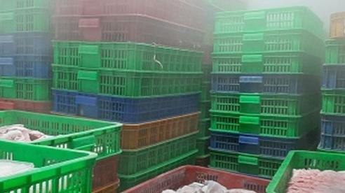 Phát hiện gần 5.600 kg thủy sản, thịt bẩn ở TP Hồ Chí Minh