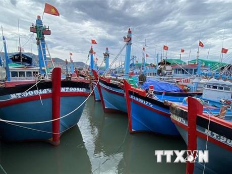 Bệnh xá đảo Sơn Ca cấp cứu kịp thời ngư dân bị tai nạn lao động