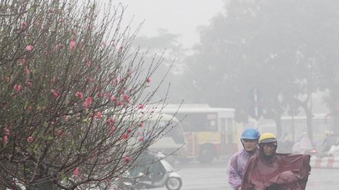Dự báo thời tiết hôm nay 16/1: Miền Bắc có mưa phùn, chuẩn bị đón rét đậm