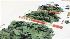 Cày ruộng phát hiện kho báu 'khủng', tiền vàng vương vãi khắp cánh đồng