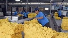 Xuất khẩu cao su: Tìm lời giải từ chứng chỉ FSC