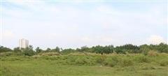Công ty Quốc Cường Gia Lai kiện Sunny Island ra VIAC liên quan đến dự án Phước Kiển