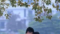 Người dân nườm nượp check-in bên hàng phong lá đỏ giữa Thủ đô