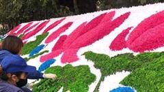 Ngày 19-1: Hoàn thành công tác trang trí cây hoa, cây cảnh