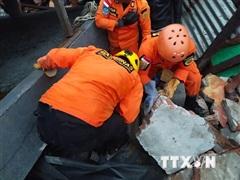 Indonesia: Hàng nghìn người chịu cảnh 'màn trời chiếu đất' do động đất