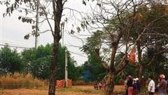 Thi thể nam giới phân hủy nhiều ngày trong bụi cỏ ở Bình Phước
