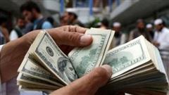 Tỷ giá ngoại tệ hôm nay 19/1: Đồng USD tiếp tục tăng giá