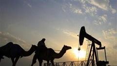 IEA hạ dự báo nhu cầu dầu năm 2021