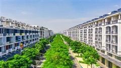 Sống an nhiên giữa lòng Sài Gòn