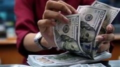 Tỷ giá ngoại tệ hôm nay 21/1: Đồng USD giảm nhẹ sau khi ông Trump rời Nhà trắng
