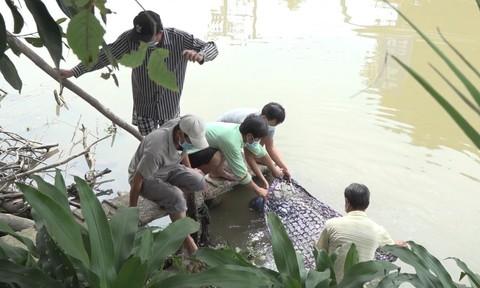 Người dân phát hiện ông bán vé số dạo chết trôi dưới sông