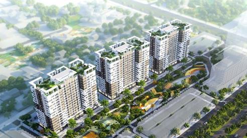 DELTA Group khởi công Khu nhà ở xã hội AMC I, Thanh Hóa