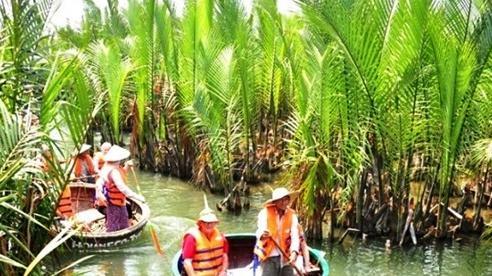 Quảng Nam rút tờ trình chuyển đổi 1ha rừng dừa làm khu đô thị Cồn Tiến