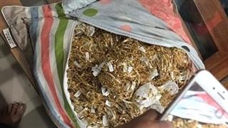 Trộm 455 lượng vàng, nam nhân viên lãnh 10 năm tù