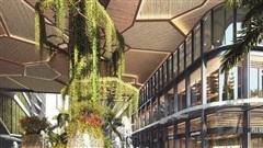 LUMIERE riverside - Câu chuyện về sự ra đời của kiến trúc leafscape độc đáo