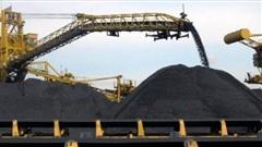 Thủ tướng giao Bộ Công Thương nghiên cứu đề nghị giảm nhập khẩu than
