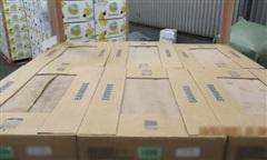 Anh: Phát hiện số ma túy 'trị giá' 104 triệu USD giấu trong container chuối