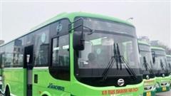 Transerco chuẩn bị mở mới 4 tuyến buýt