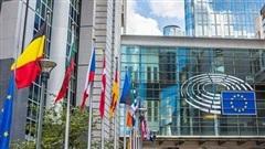 Pfizer đối mặt khủng hoảng tại châu Âu