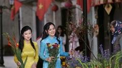 Huyền Sâm 'Hướng dương ngược nắng' tái hiện Tết Việt xưa