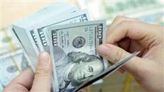 Tỷ giá ngoại tệ hôm nay 24/1: Đồng USD tăng trước số liệu lạc quan của kinh tế Mỹ