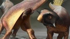 Cuối cùng thì giới cổ sinh vật học cũng đã tìm ra được 'cần tăng dân số' của khủng long