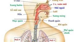 Bệnh phổi tắc nghẽn mạn tính như một 'lưỡi hái tử thần'