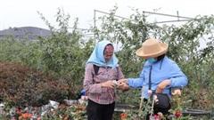 Chuẩn nghèo năm 2021 trên địa bàn thành phố Hà Nội không thay đổi so với năm 2020