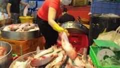 Việt Nam quan ngại vì Brazil ra quy định 'làm khó' cá tra, tôm