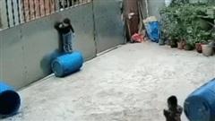 Video: Hãi hùng khoảnh khắc bé trai 3 tuổi bị dây thừng siết cổ khi chơi trong vườn nhà