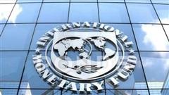 IMF lạc quan về kinh tế toàn cầu năm 2021