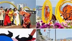 Đường phố Đà Nẵng rực rỡ sắc hoa những ngày giáp Tết