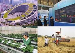Chuyên gia kinh tế Nguyễn Trí Hiếu: Phát triển kinh tế số là xu hướng tất yếu của thời đại