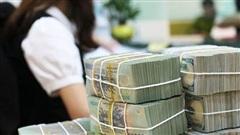 Nữ kế toán chiếm đoạt hơn 100 tỉ đồng gửi ngân hàng