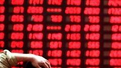 Nhà đầu tư hoảng loạn bán tháo, VN-Index đỏ sàn