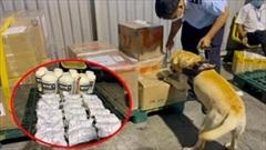 Bắt giữ thêm hơn 5 kg ma tuý tại sân bay Tân Sơn Nhất