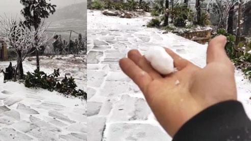Y Tý tuyết rơi trắng xoá: Ảnh và clip liên tục được chia sẻ lên mạng xã hội