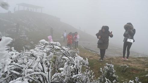 Không khí lạnh tăng cường, Bắc và Trung bộ tiếp tục rét hại, mưa tuyết xuất hiện ở Lào Cai