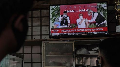 Tổng thống Indonesia tiêm vắc xin Trung Quốc trên truyền hình trực tiếp