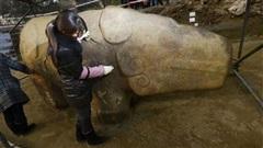 Thần thú 4 tấn liên quan mật thiết với Tần Thủy Hoàng đã hồi sinh