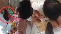 Người mẹ gào thét khi thấy con gái cầm chuột nhưng phản ứng sau đó mới khiến dân mạng phẫn nộ