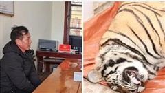 Vụ phát hiện hổ nặng 250kg trong nhà dân ở Hà Tĩnh: Chủ nhà mua về để nấu cao?
