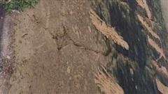 Ám ảnh những vết cào cấu trên bờ đê của cậu bé lớp 3 khi cố thoát khỏi dòng nước dữ