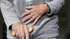 Uất nghẹn vì lời gạ gẫm bị từ chối, cụ bà 79 tuổi đánh trai trẻ đến chết rồi chôn trong vườn, sau đó tội ác xưa cũng bị phanh phui