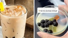Thử soi trà sữa vỉa hè dưới kính hiển vi: TikToker nhận về 7 triệu view trong một ngày, khiến hàng ngàn người sợ hãi không dám uống