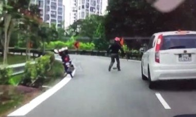 Clip tài xế môtô không màng nguy hiểm dừng xe giúp chú rùa qua đường