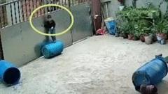 Bé trai gặp tại nạn kinh hoàng khi đang chơi đùa trong sân nhà