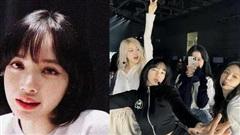 Lisa bị tấn công vì share trễ story ủng hộ màn debut solo của Rosé, fan BLACKPINK chiến nhau nảy lửa nhưng sự thật là gì?
