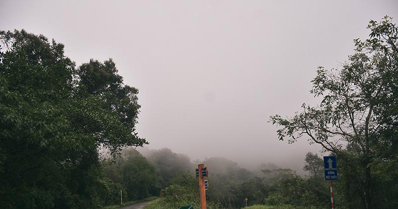 Đà Nẵng lạnh nhất trong 5 năm, mây mù phủ kín đường lên bán đảo Sơn Trà tạo cảnh tuyệt đẹp