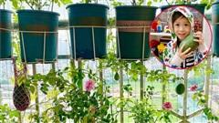 Giàn dưa hấu trồng ở ban công của cặp vợ chồng trẻ cho thu hoạch ngoài mong đợi: Quả gần 1kg đỏ mọng, ít hạt